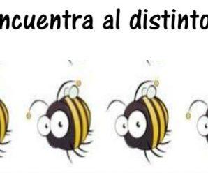 Encuentra la abeja distinta en 20 segundos